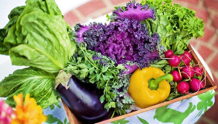 Il metodo molecolare di alimentazione consapevole