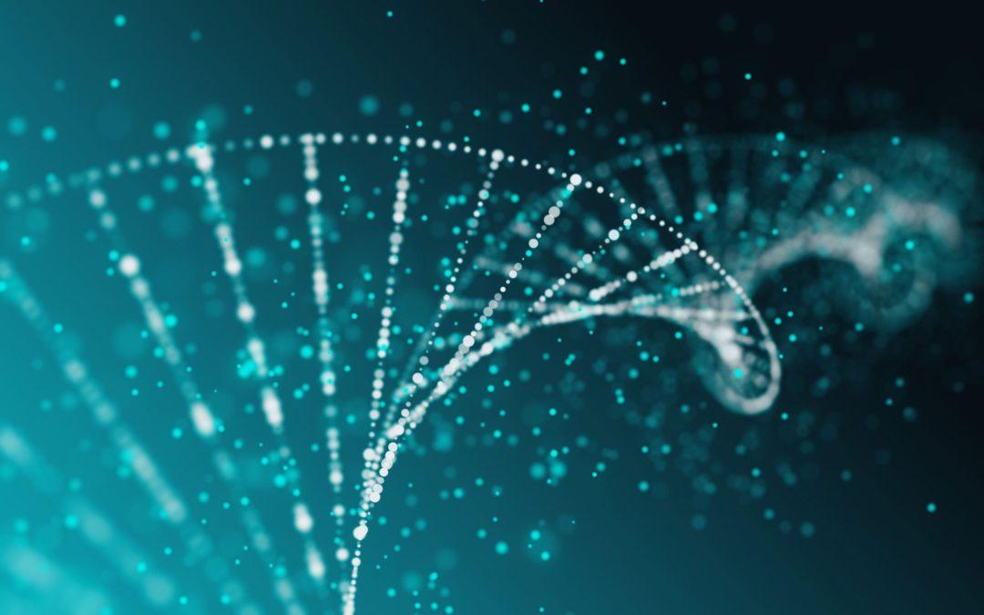 Le molecole alimentari agiscono sul DNA. Dal cibo al DNA. La genomica nutrizionale.